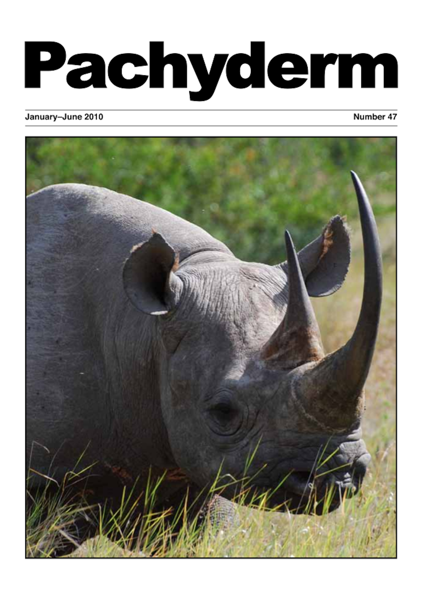 Cover: Eastern black rhino (Diceros bicornis ss. michaeli) at Ol Pejeta Conservancy, Kenya. Photo: Brendan Hill