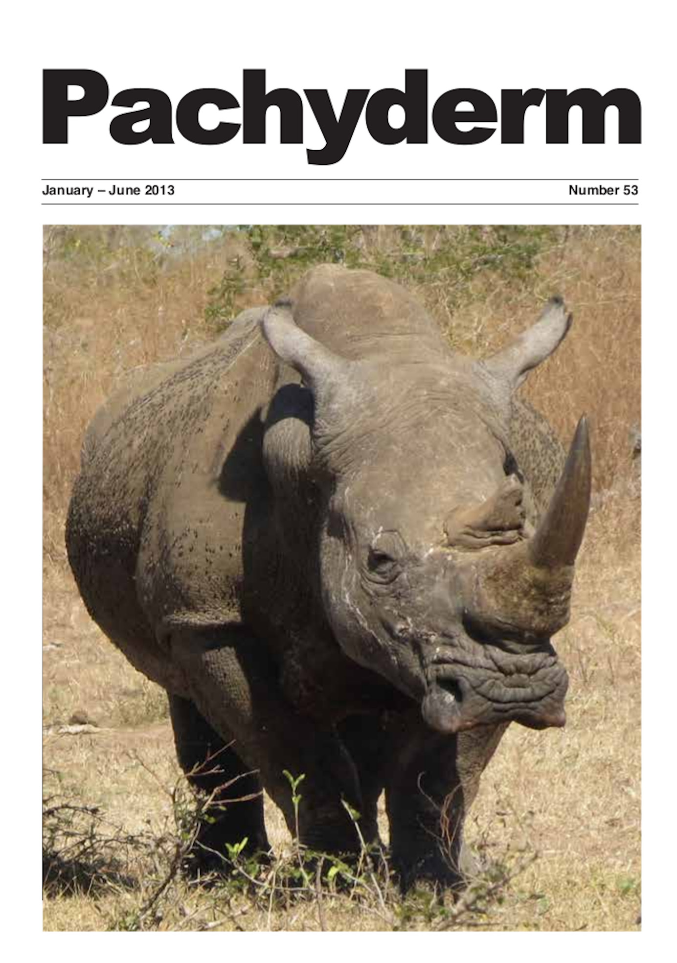 Cover: African rhino in Kruger National Park, South Africa © Bibhab K. Talukdar