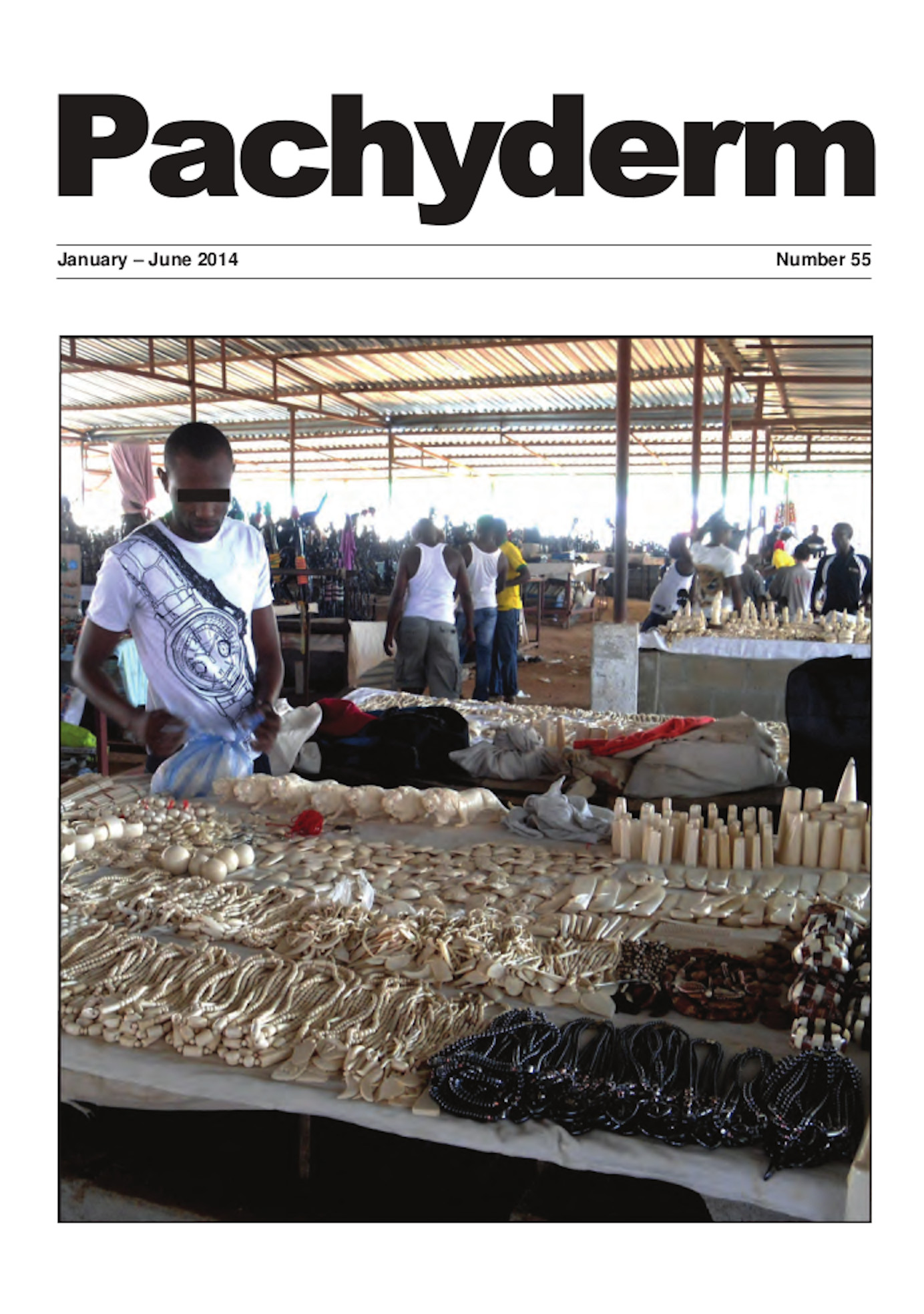 Cover: Angolan authorities rarely inspect the displays of ivory in Mercado do Artesanato in Luanda, resulting in the largest quantity of illegal ivory on sale in southern Africa. © Lucy Vigne