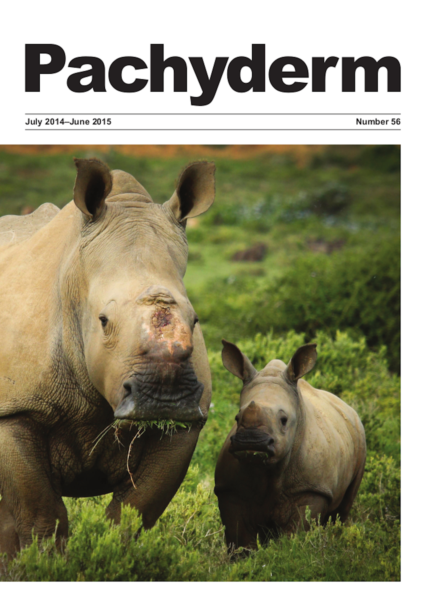 Cover caption: Thandi and her six month old calf ('Thembi' that means hope in isiXhosa) in Shamwari Game Reserve, South Africa. Thandi survived a brutal attack by poachers, defacing her and destroying her horn growth plate. Only through skilful veterinary work and innovative skin grafts did she survive. © Daniel Haesslich/Kariega Reserve