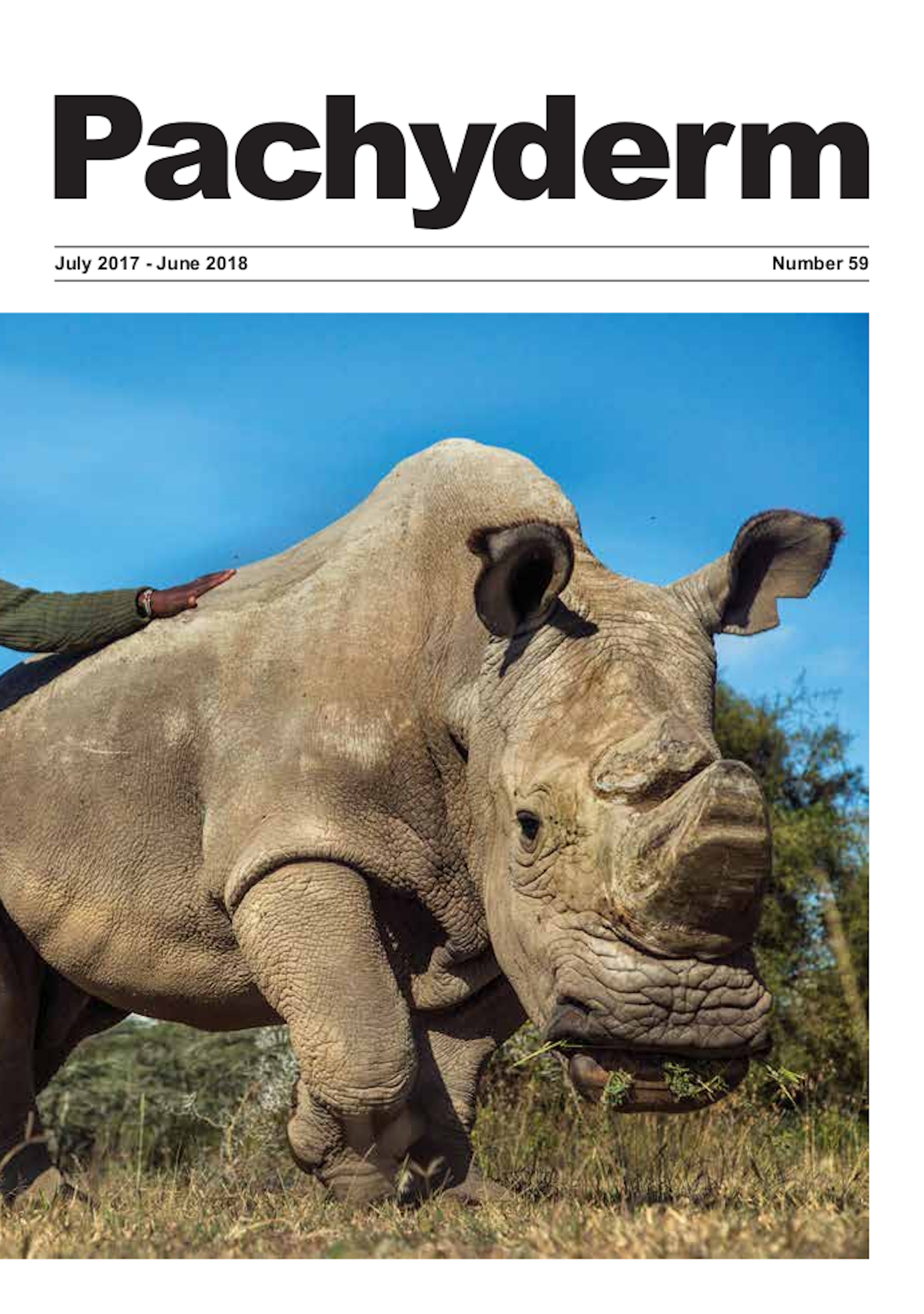 Cover caption: The world's last male northern white rhinoceros Sudan who died on the 31 March 2018 at the age of 45 from age-related complications, is pictured with his faithful rangers: John Mutugi Mugo (front), and Daniel Kamau Maina (behind). Sudan was born in Shambe Game Reserve, now southern Sudan, and exported to the Dvůr Králové Zoo in former Czechoslovakia in 1975 together with five other rhinos. In 2009 following intervention by the AfRSG it was recommended that Sudan and his group were moved to a more natural environment to potentially enhance breeding at the Ol Pejeta Conservancy, Kenya. Sadly, breeding has not been successful. The northern white rhino was declared extinct in the wild by 2010. There are only two remaining captive northern white rhino in the world— Sudan's daughter, Najin and grand-daughter, Fatu. ©Georgina Goodwin