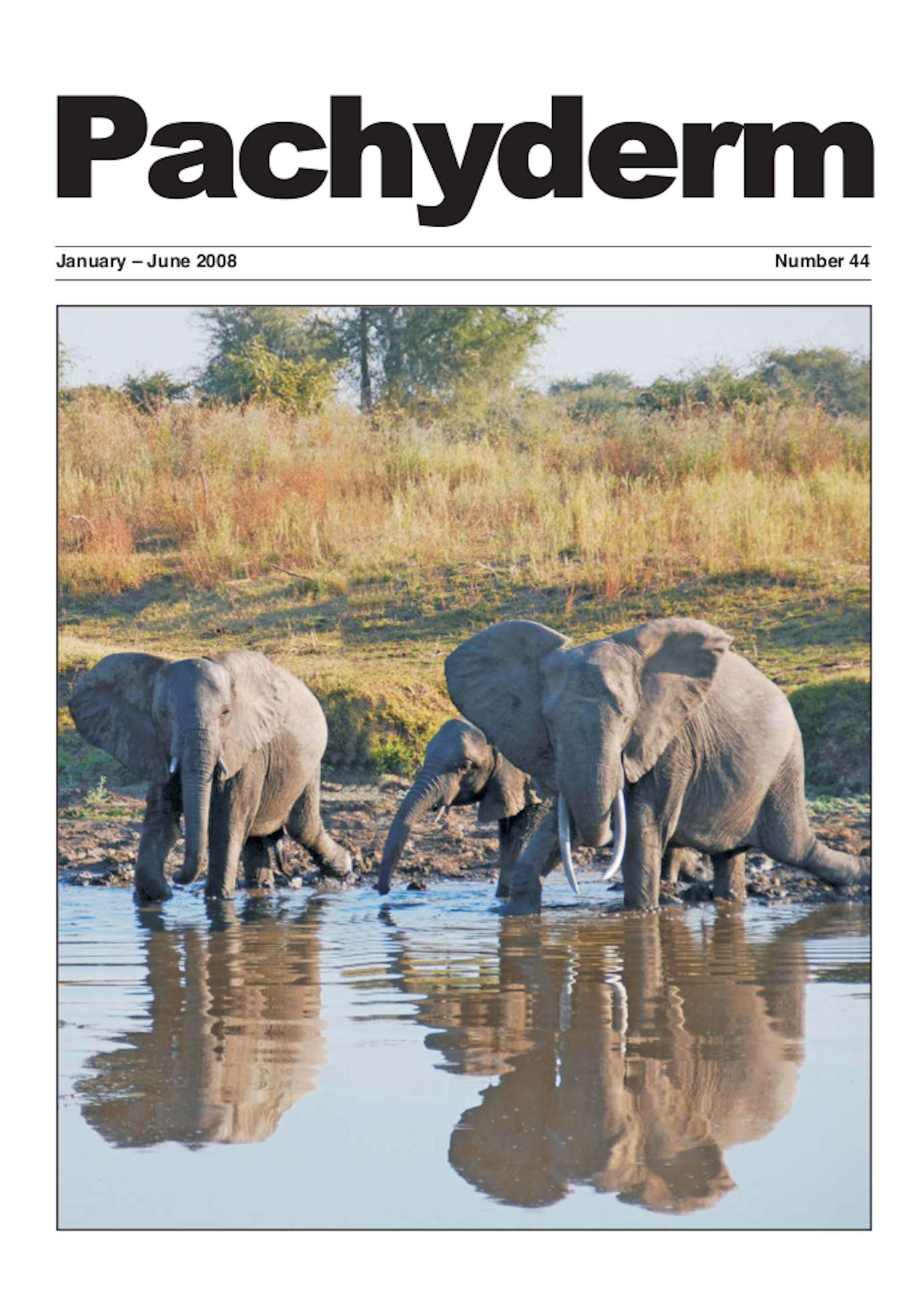 Cover: Elephant herd Luangwa Valley, Zambia. Photo: Julian Fennessy