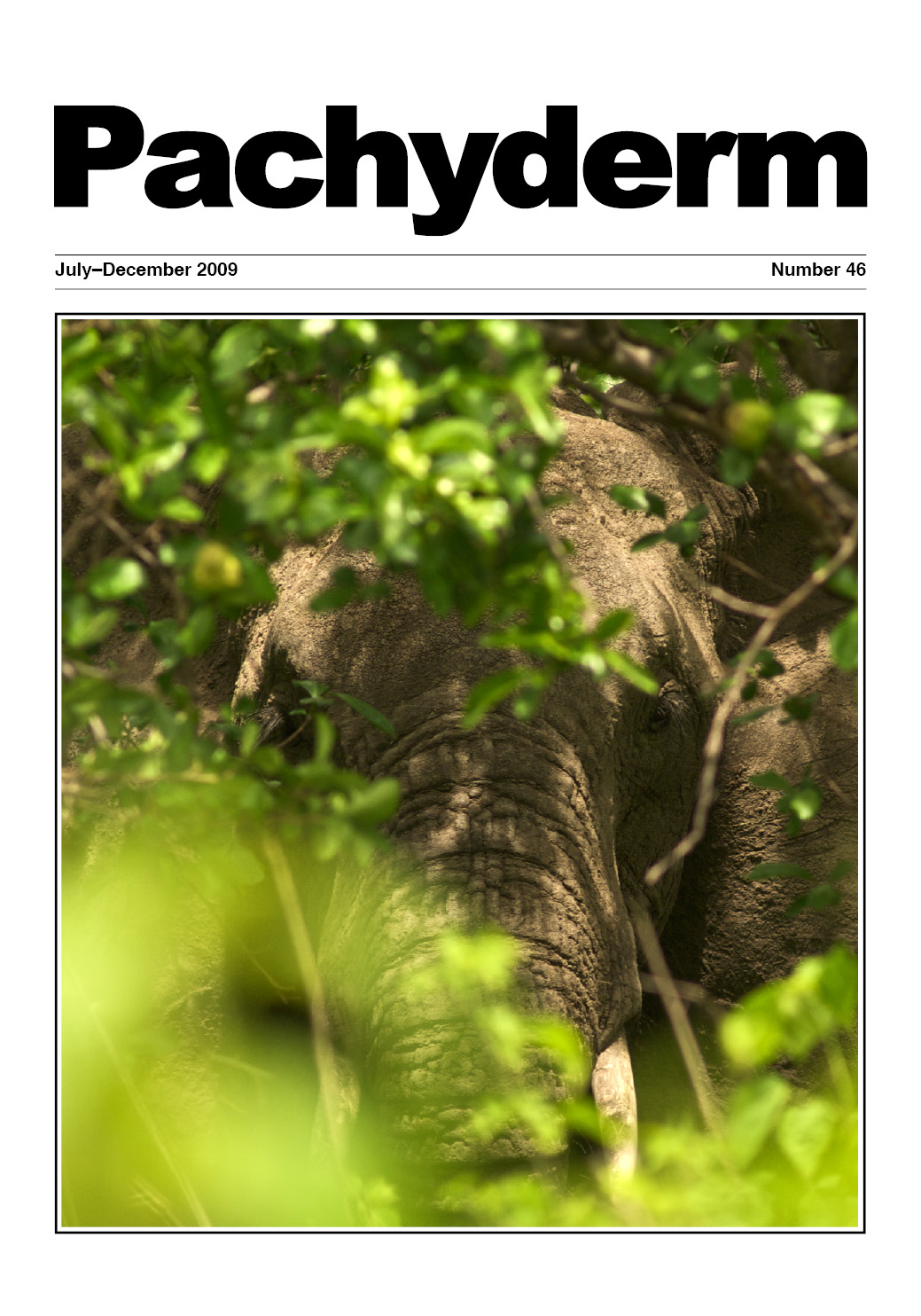 Cover: A savannah elephant in a montane forest of the Udzungwa Mountains, Tanzania. Photo: Michele Menegon